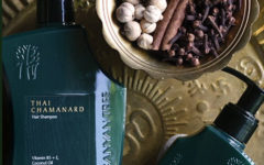 Dalle Baynan Tree SPA, i prodotti di bellezza