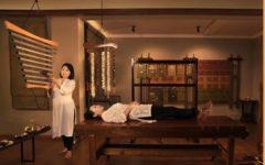 Terapie e massaggi acustici nella SPA del Svatma Hotel, in India
